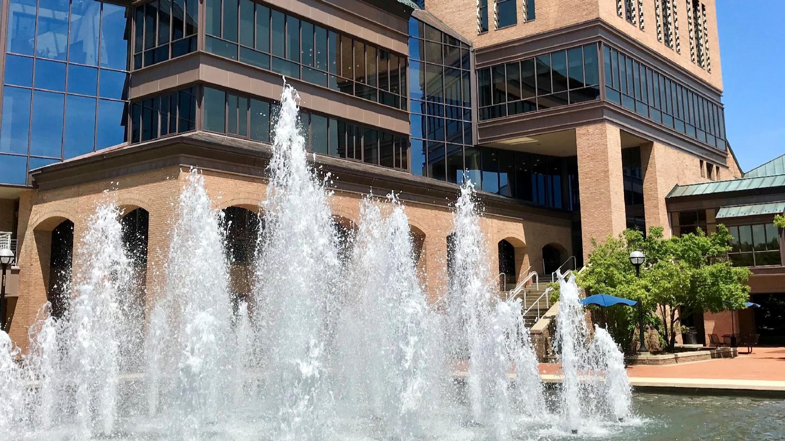 University of Michigan Fountain